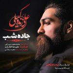 آکورد آهنگ جاده شب از علی زندوکیلی